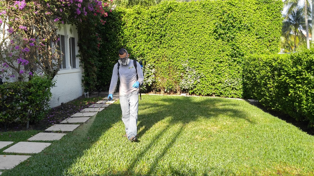 Lawn Care Lawn Maintenance Coral Springs